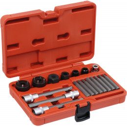 Coffret d'outils de démontage d'alternateur  18 pcs   DRAKKAR TOOLS 10769